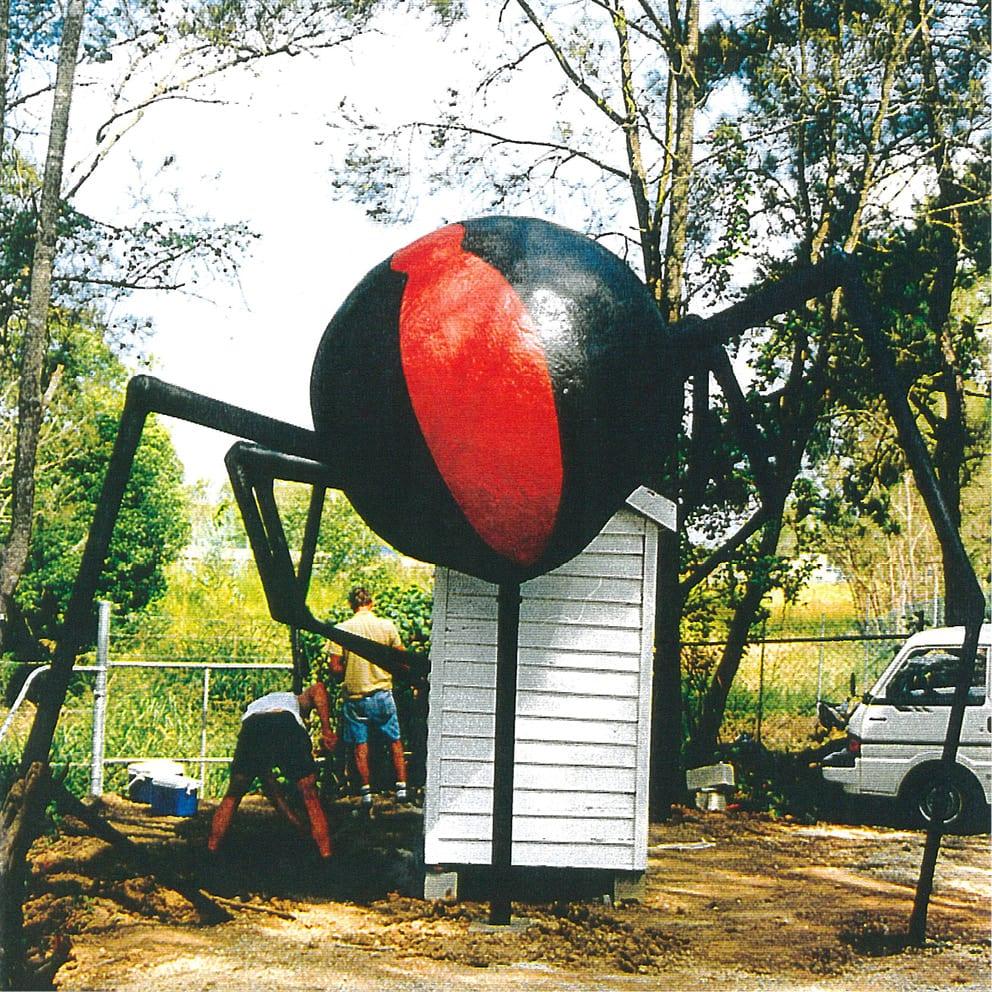Redback Spider Rear View