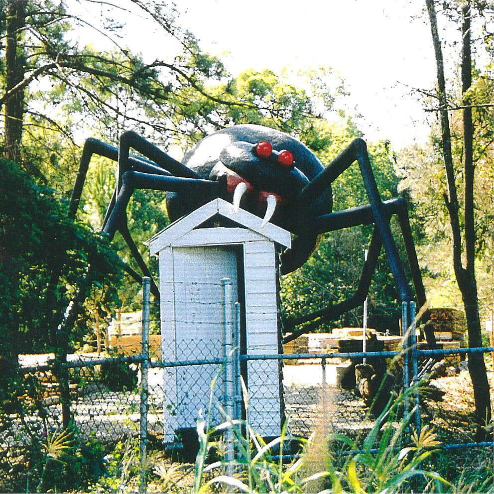 Redback Spider front view V