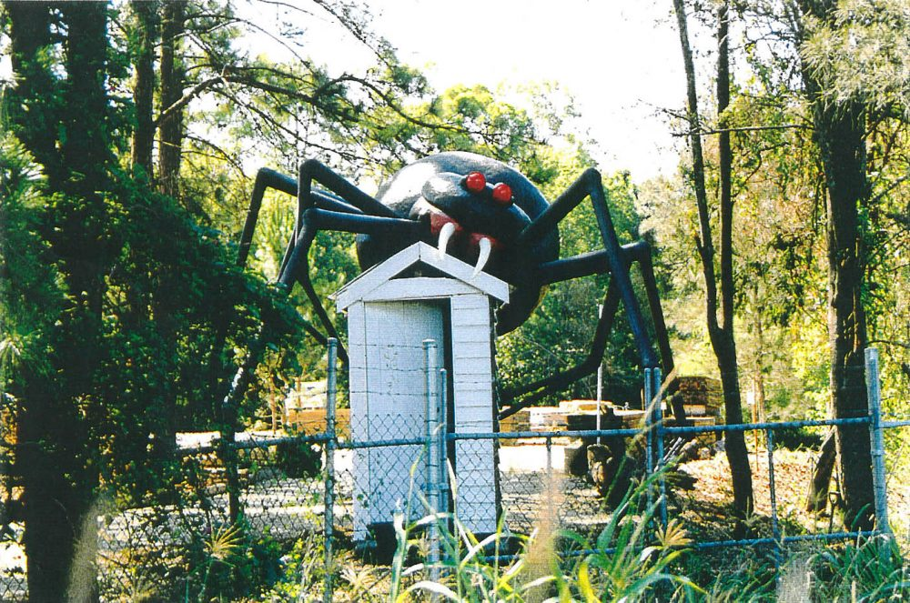 Redback Spider scares customers