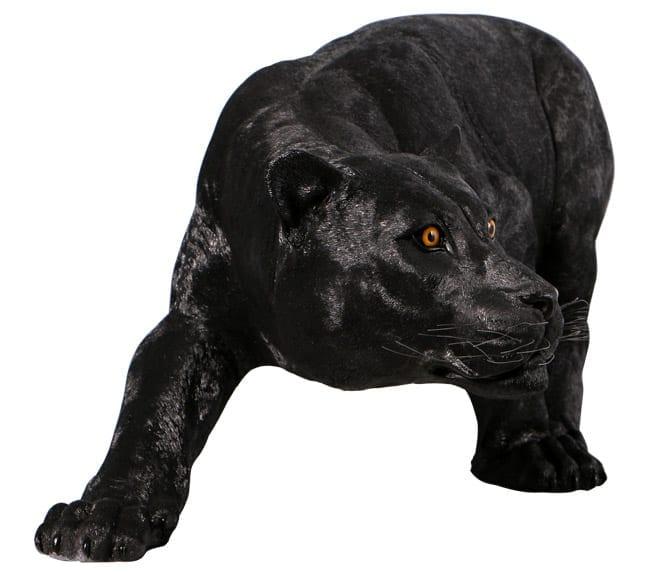 Shadowed Predator Black Panter Garden Statue