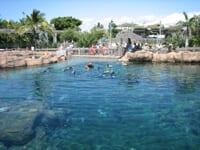 Shark Bay Sea World View