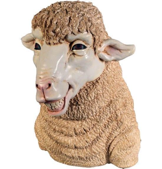 Sheep Head  Smiling