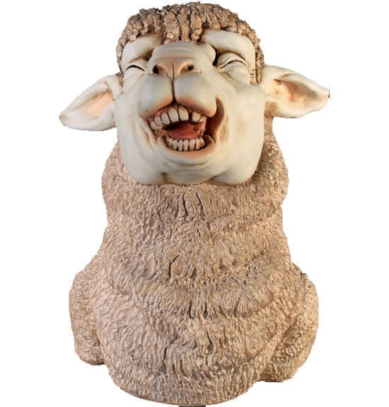 Sheep Head laughing front
