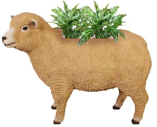 Sheep Ryeland Planter With plant