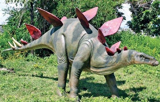 Stegasaurus Dinosaur Large