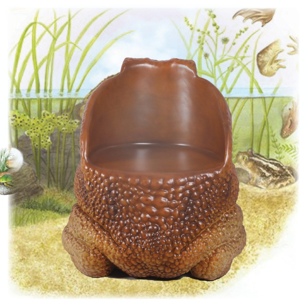 Cane Toad Chair