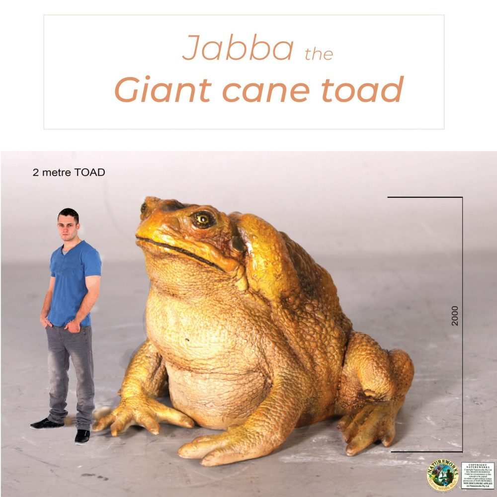 Toads - Cane Toad - Giant 2m high_size comparison
