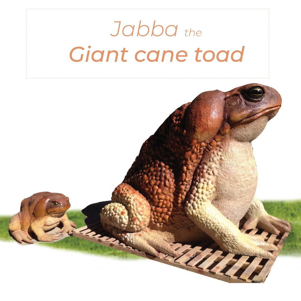 Giant Toad 2 metre High Custom Sculpture - with smaller toad size comparison