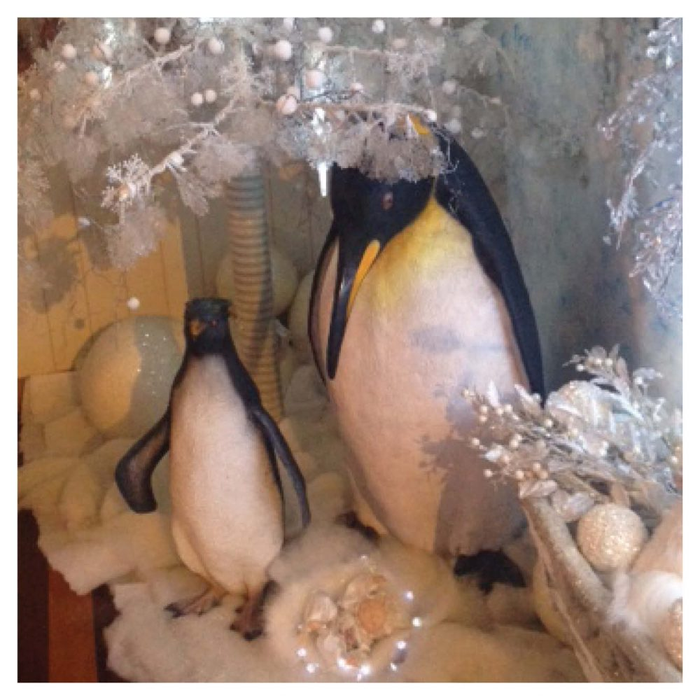 Water Birds_Penguin Set