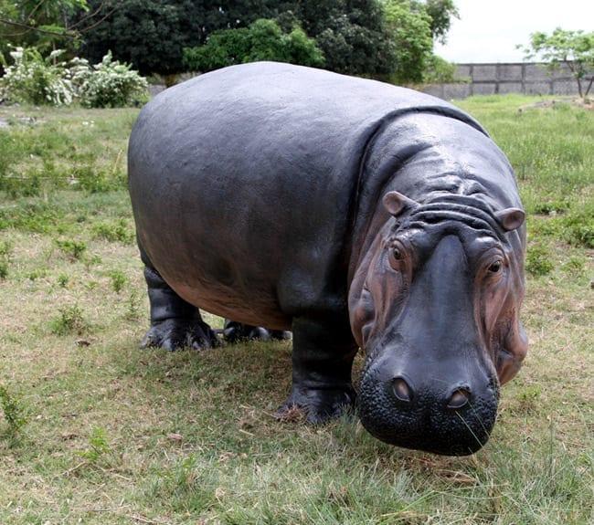 hippopotamus Garden Decoration Statue