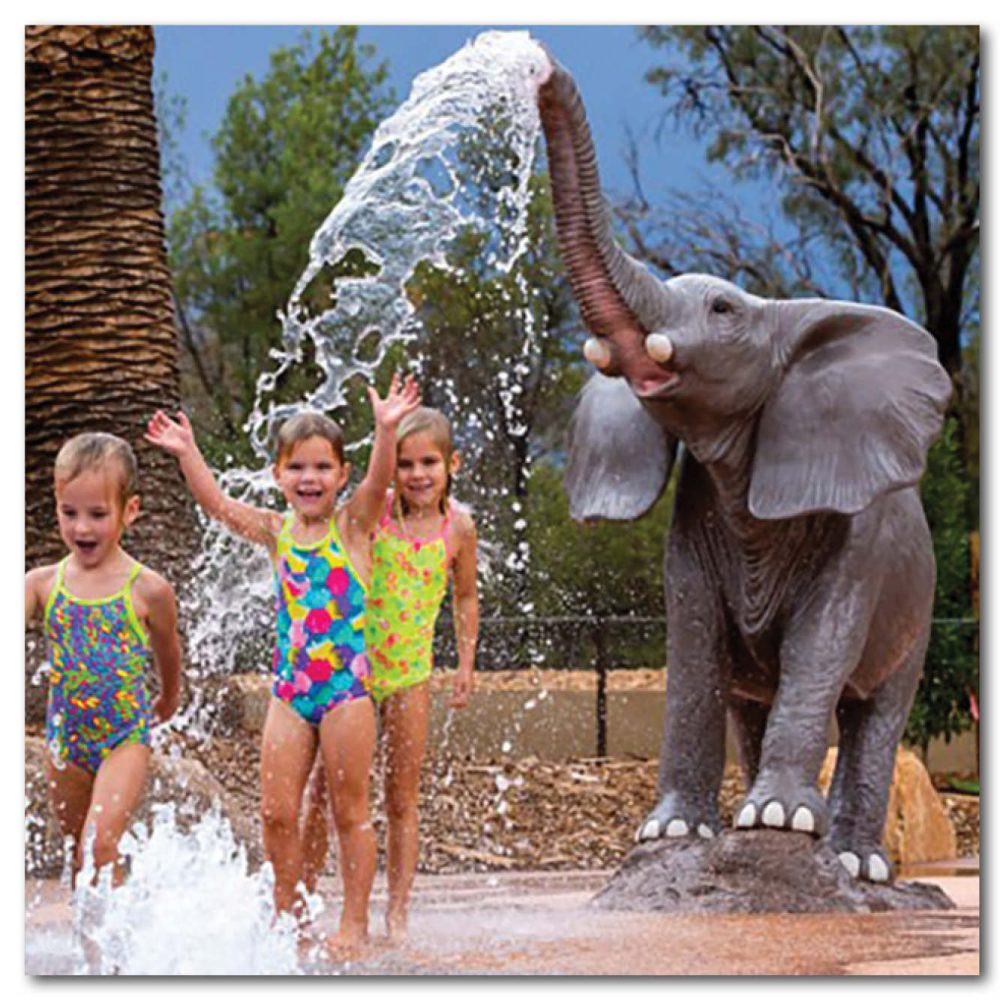 Animals Mammals safari animals Elephants African  m trunck up with water spout Product Image Va px px