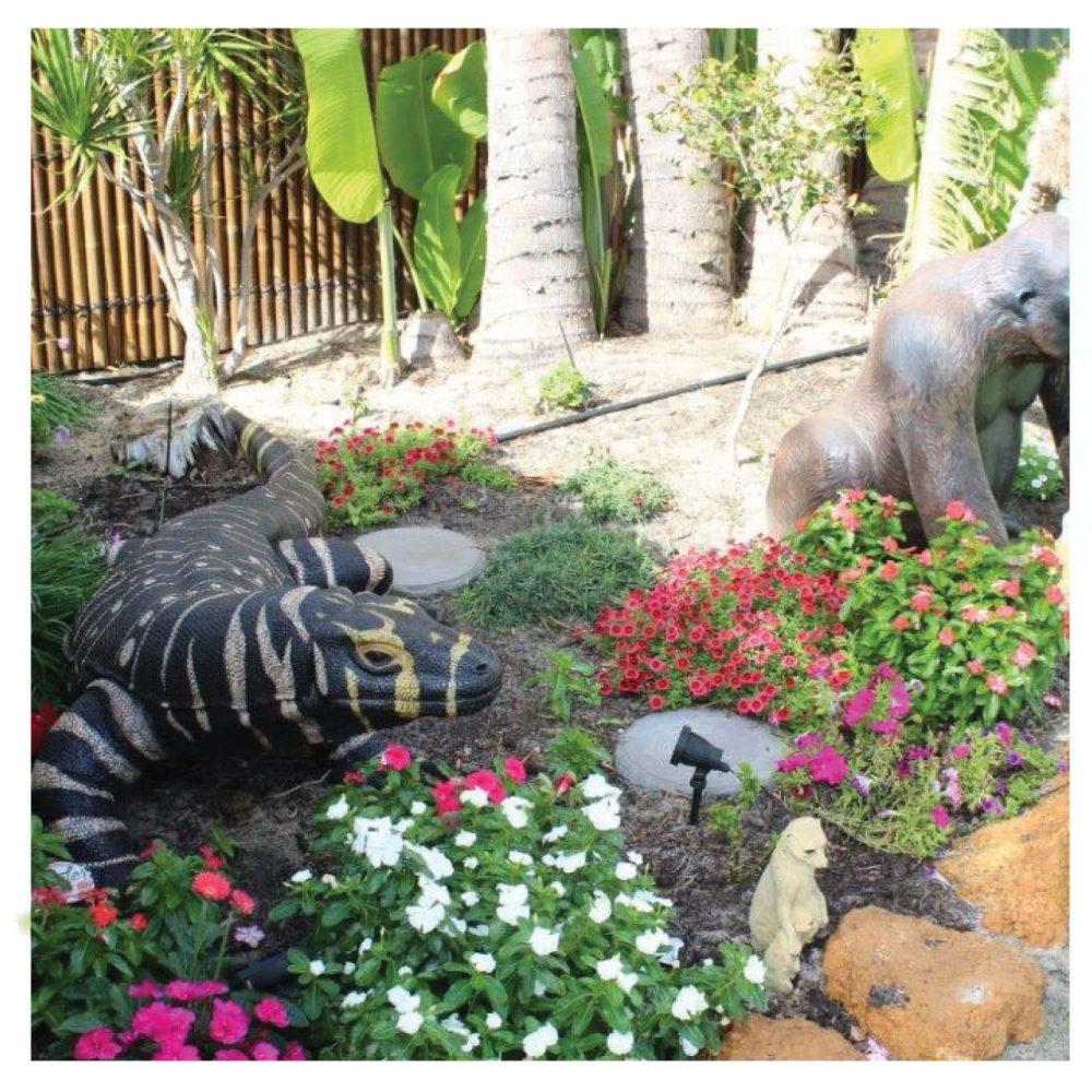 Animals Reptiles Lizards  Komodo Dragon Bells Monitor finish Product Image V px px