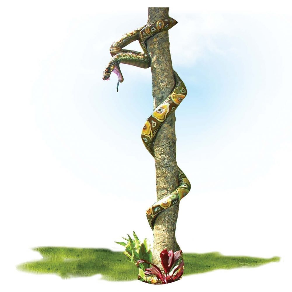 Animals Reptiles Snakes Montypythonoides Riversleighensis on a tree trunk Product Image V px px