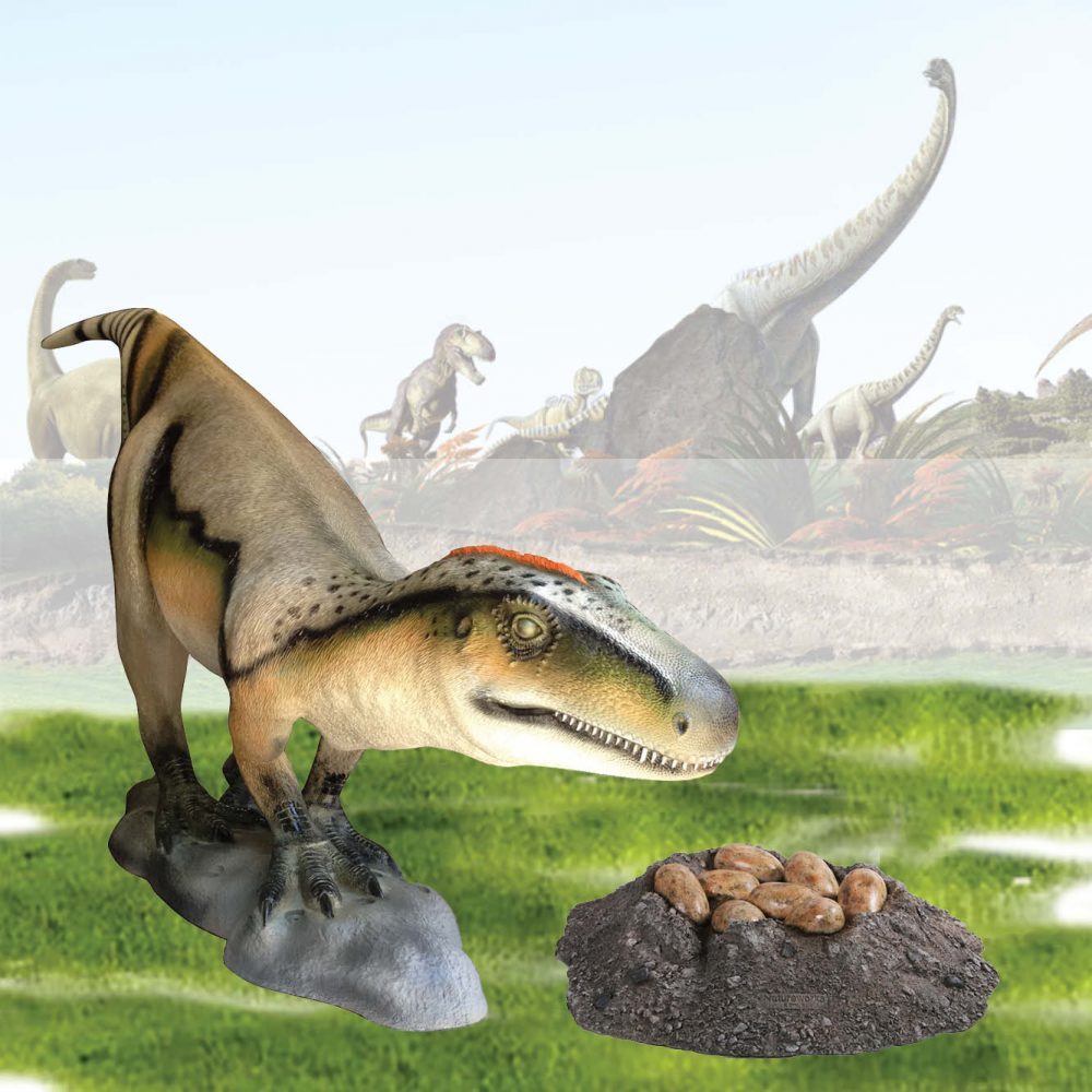 Dinosaur Nest with Eggs- theropod - 190150