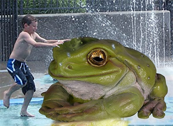 Giant Frog - Water play feature