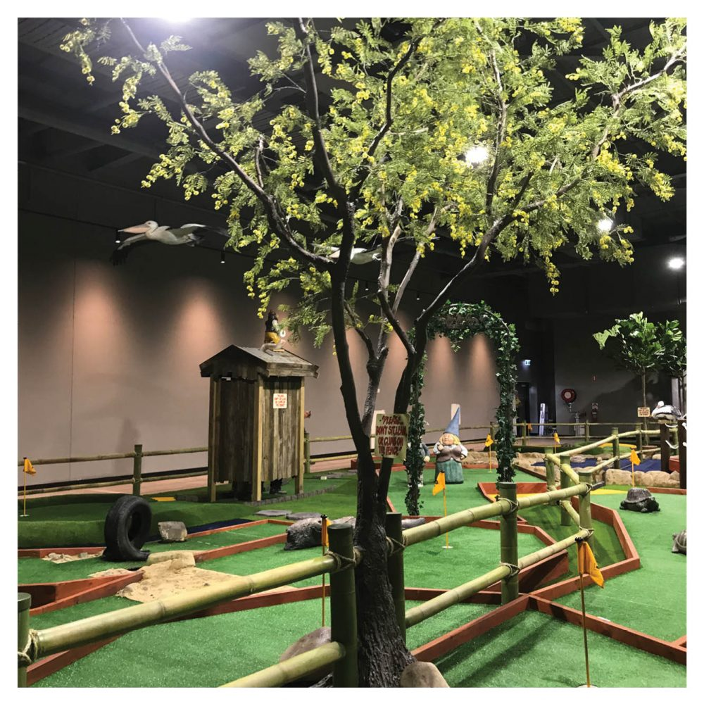 Mini Golf Theming Putt in the Park Coomera Westfield Shopping Centre Product Gallery  px px