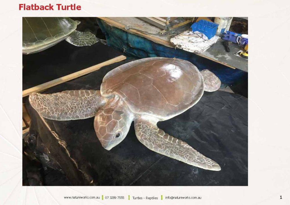 Natureworks Turtles Page