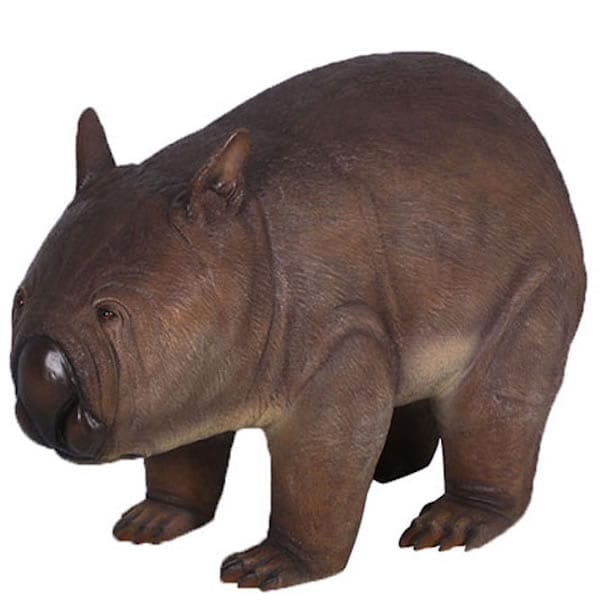 Phascolonus extinct giant wombat