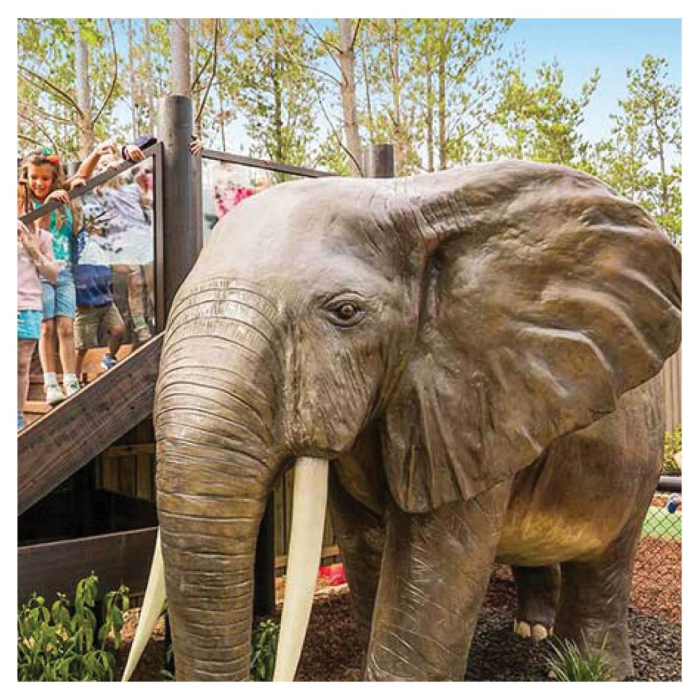 Playground Theming Completed Playgrounds Elephant Product Gallery   px px