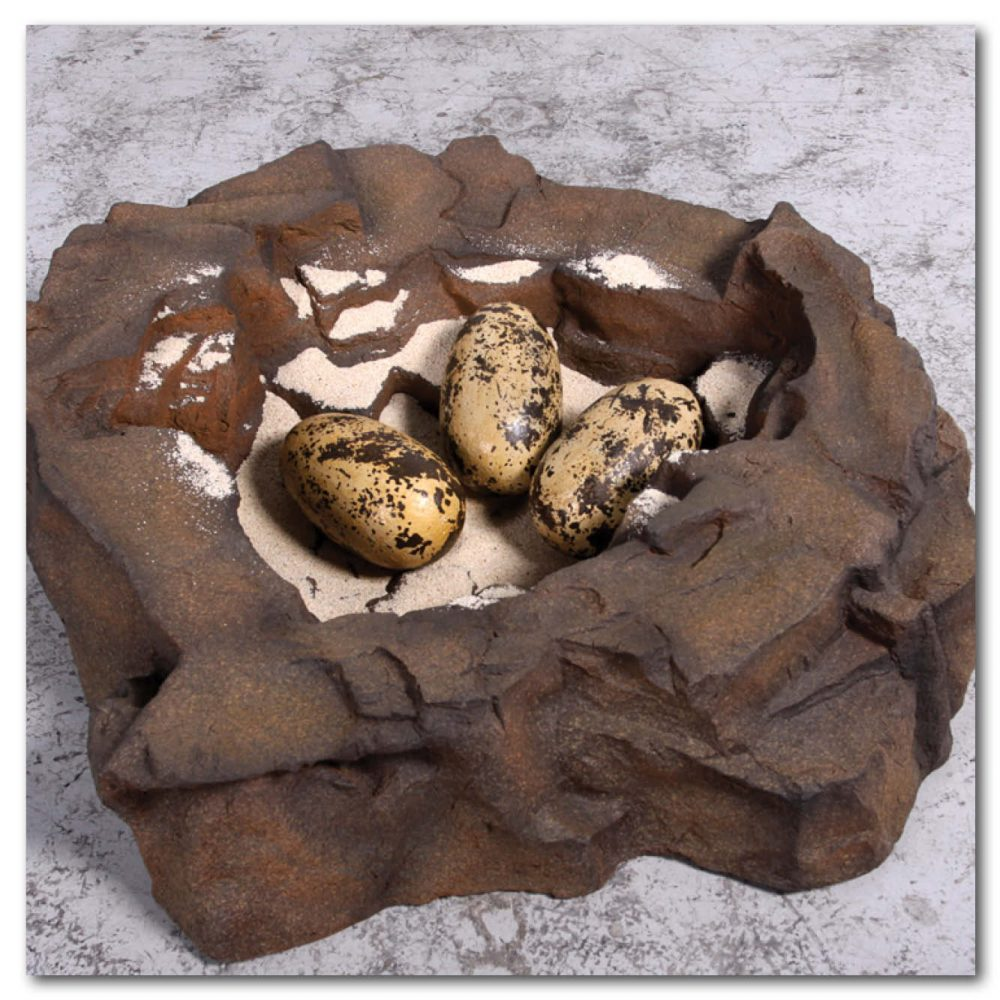 Prehistoric Dinosaur Eggs Theropod  inch Product Image V px px