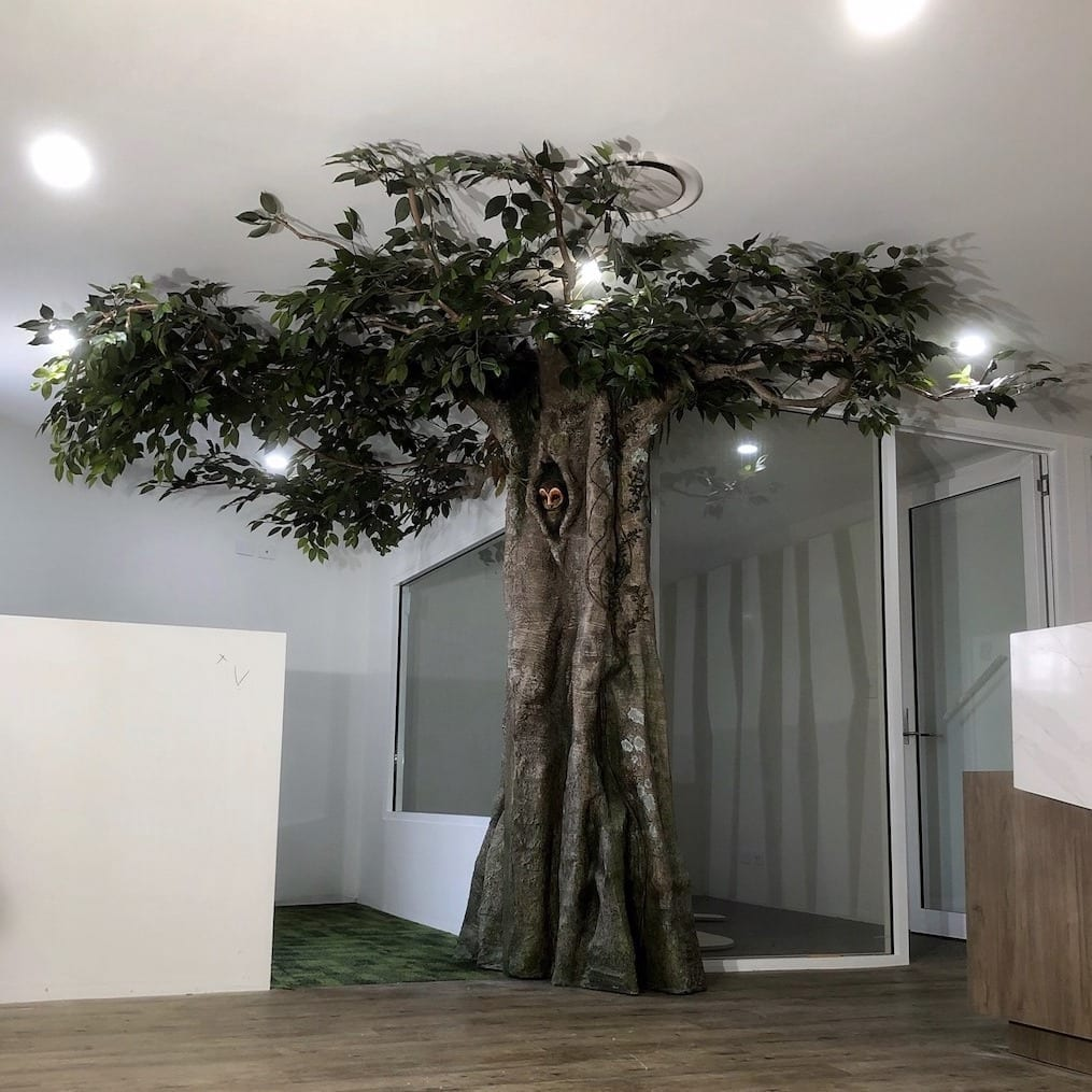 tree in waiting room