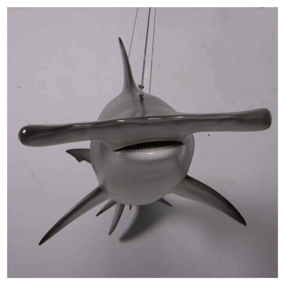 Scalloped Hammerhead Shark 6ft- Hanging - Front View showing hammer head -detail photo