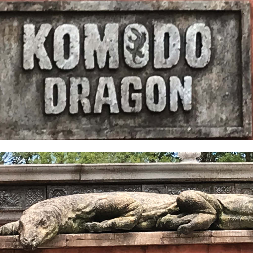 Komodo Dragon - Tail Hanging - Large statue