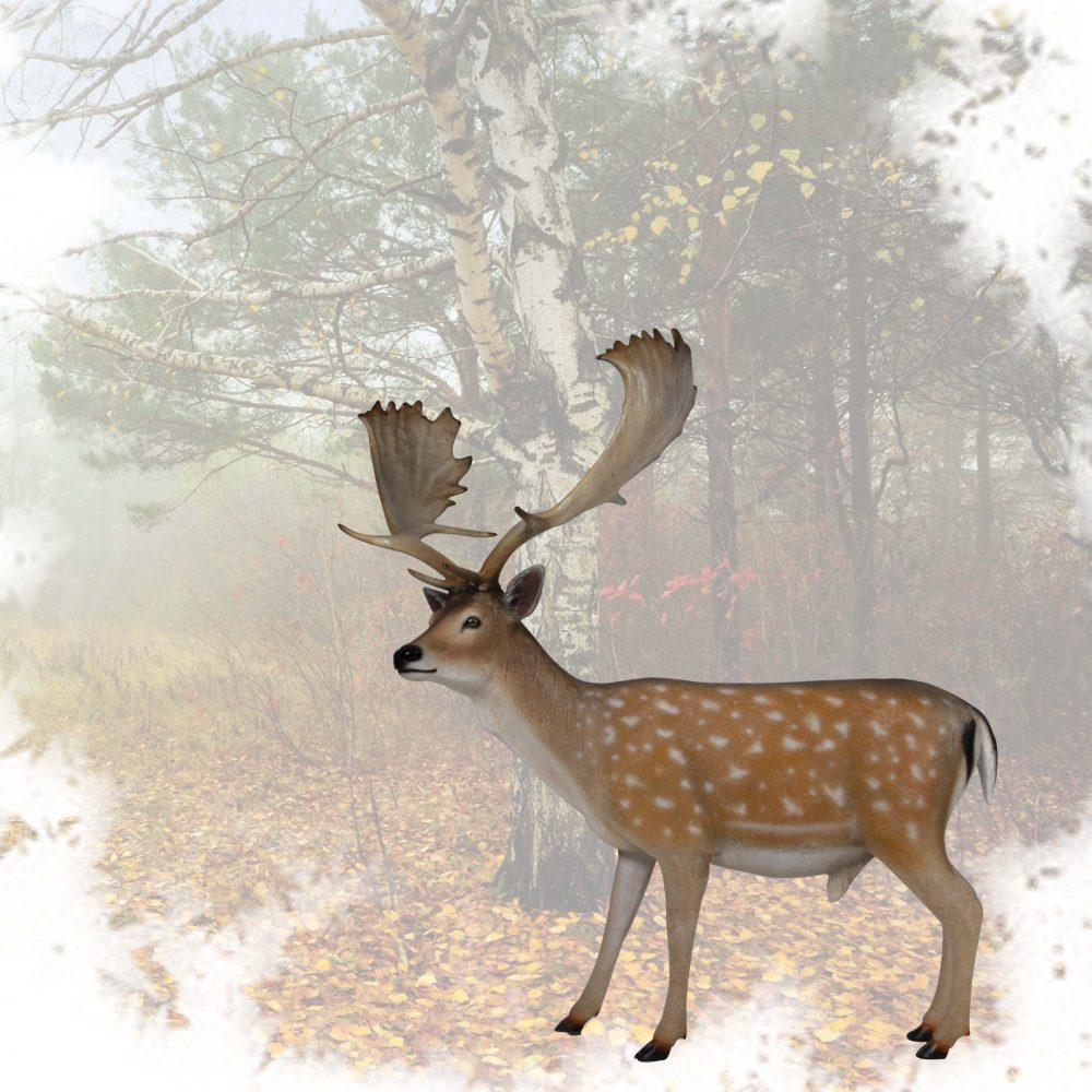 Deer Buck sculpture - fallow