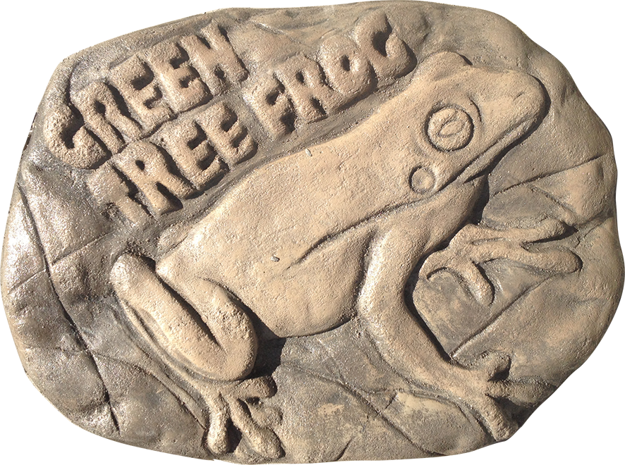 Green Tree Frog Stepping Stone