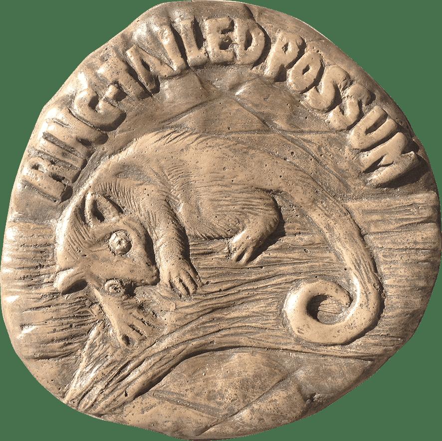 Ring Tailed Possum Stepping Stone