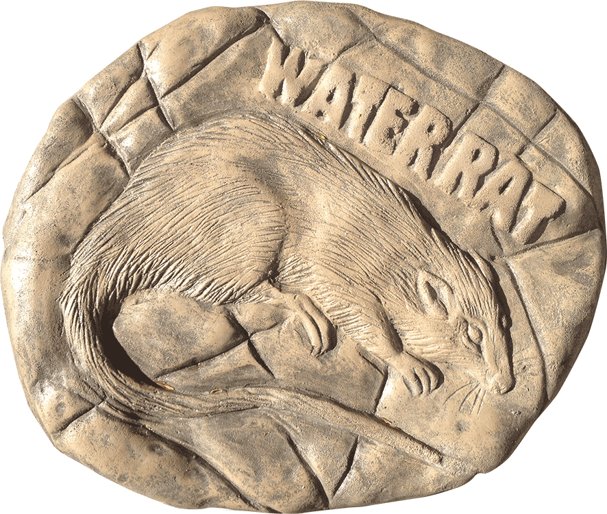 Water Rat Stepping Stone