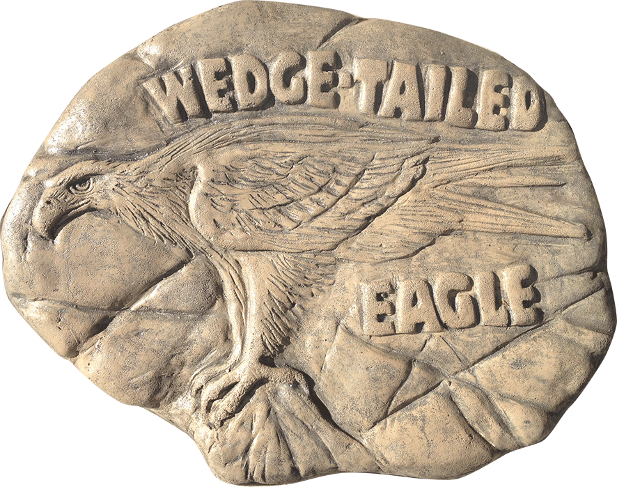 Wedged Tailed Eagle stepping stone