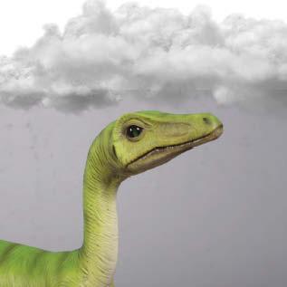 Compsognathus Dinosaur   head view Image