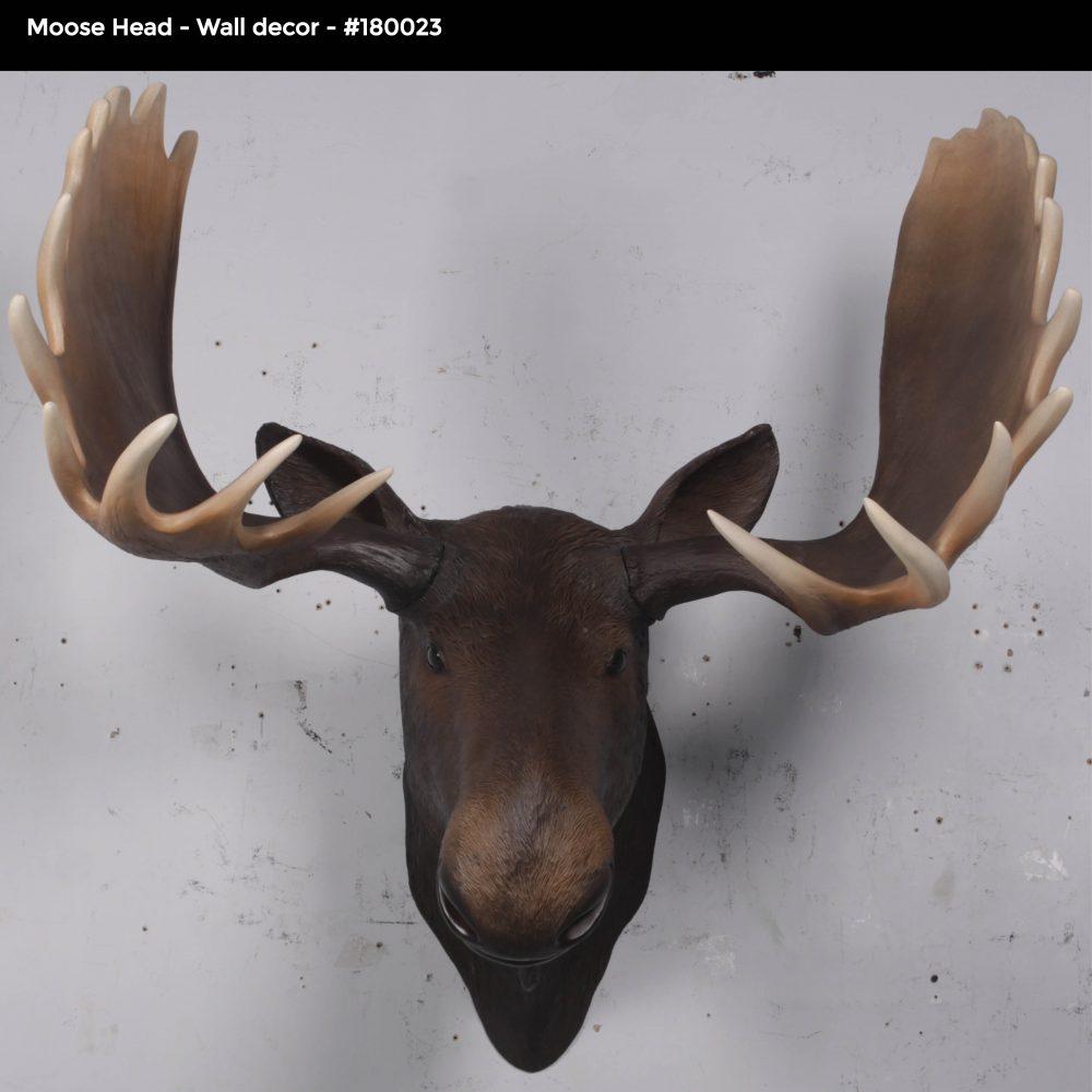Moose head – Wall Décor