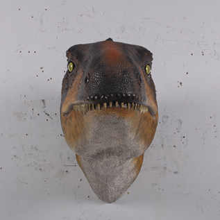 Rosewood Raptor_Dinosaur_Head and Neck only - Wall Decor -front view