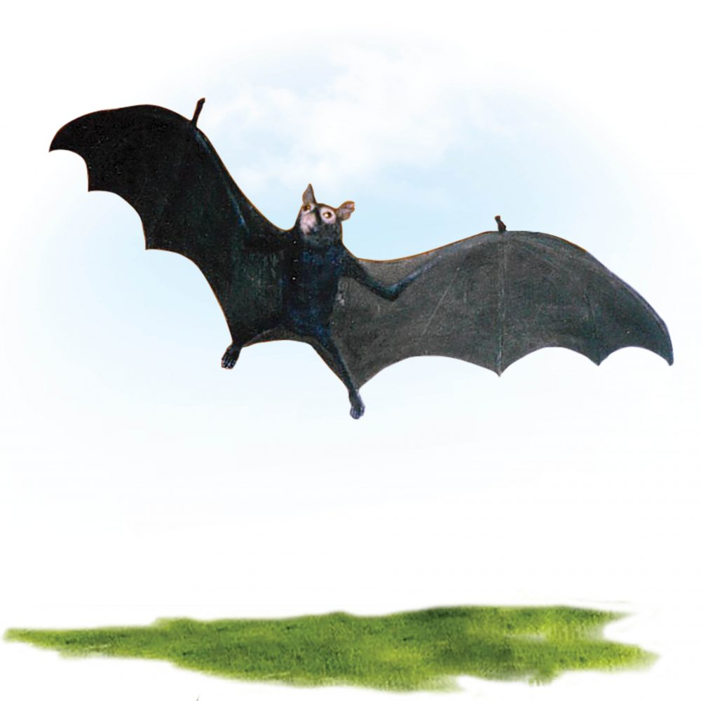 Bat -Black flying fox replica Flying pose