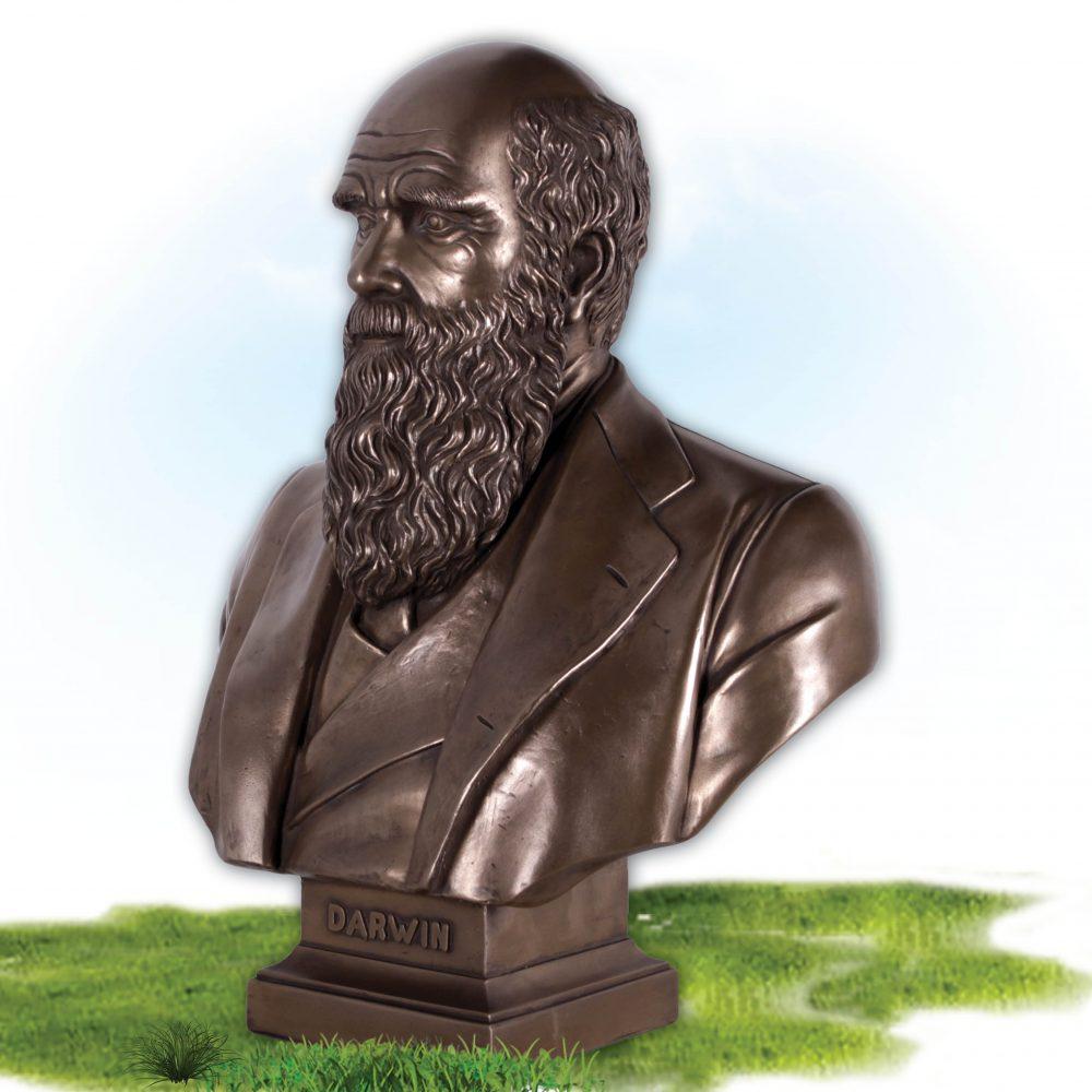 Charles Darwin Bust on base- Bronze finish