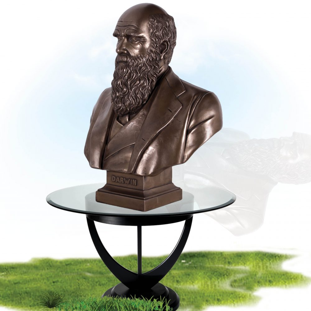 Charles Darwin Bust on base- Bronze finish - on table