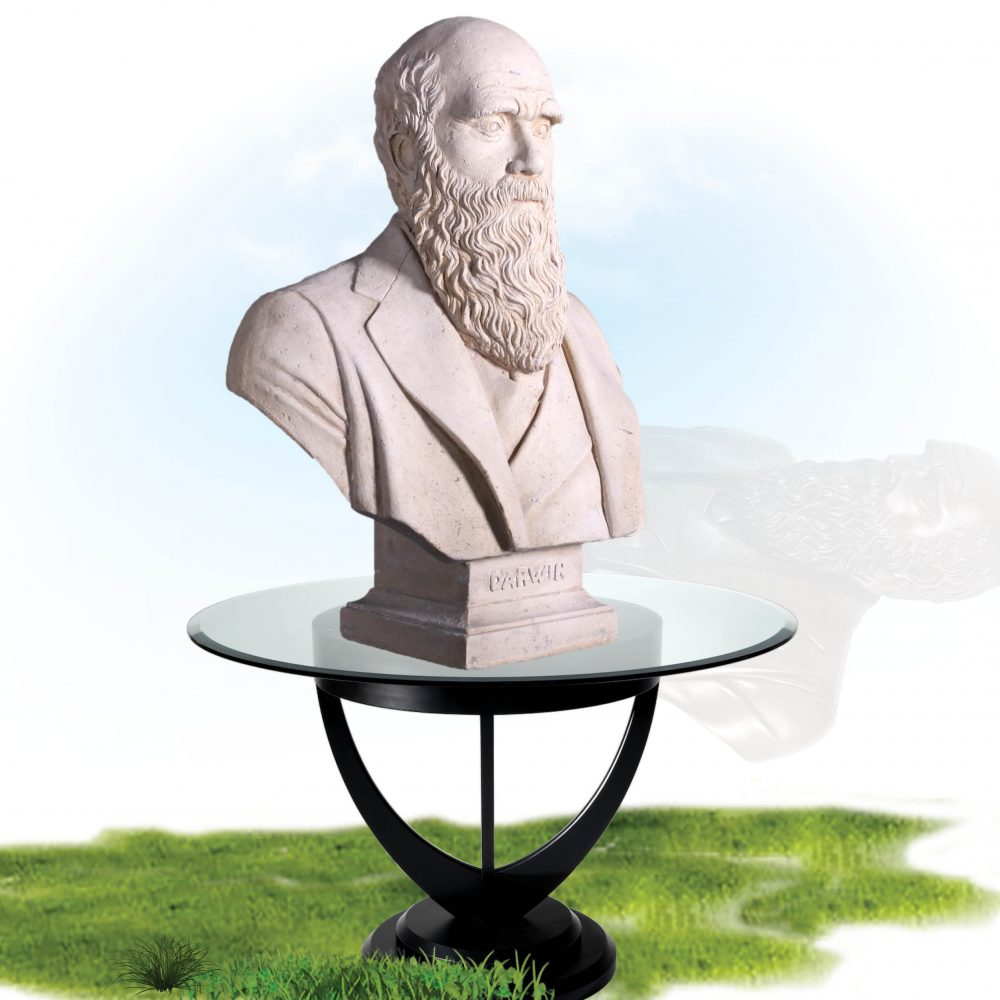 Charles Darwin Bust – Reproduction with Roman stone finish