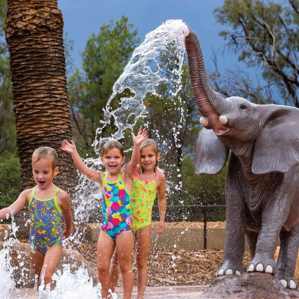 Elephant Spirting water at Dubbo Western Plains Zoo