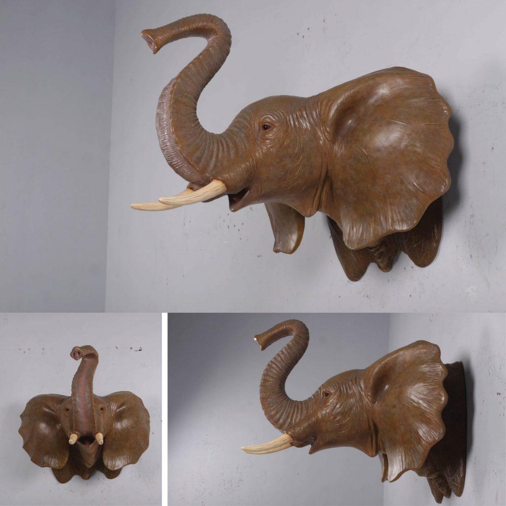 Elephant Head - Wall Deocr_on Wall_1701786 Various views