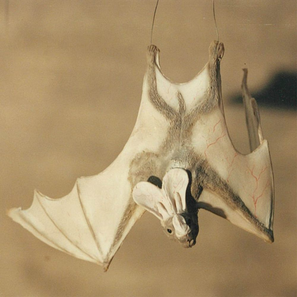 Ghost bat - hanging wings open - Creamy white colour_shown hanging with wire attached to feet
