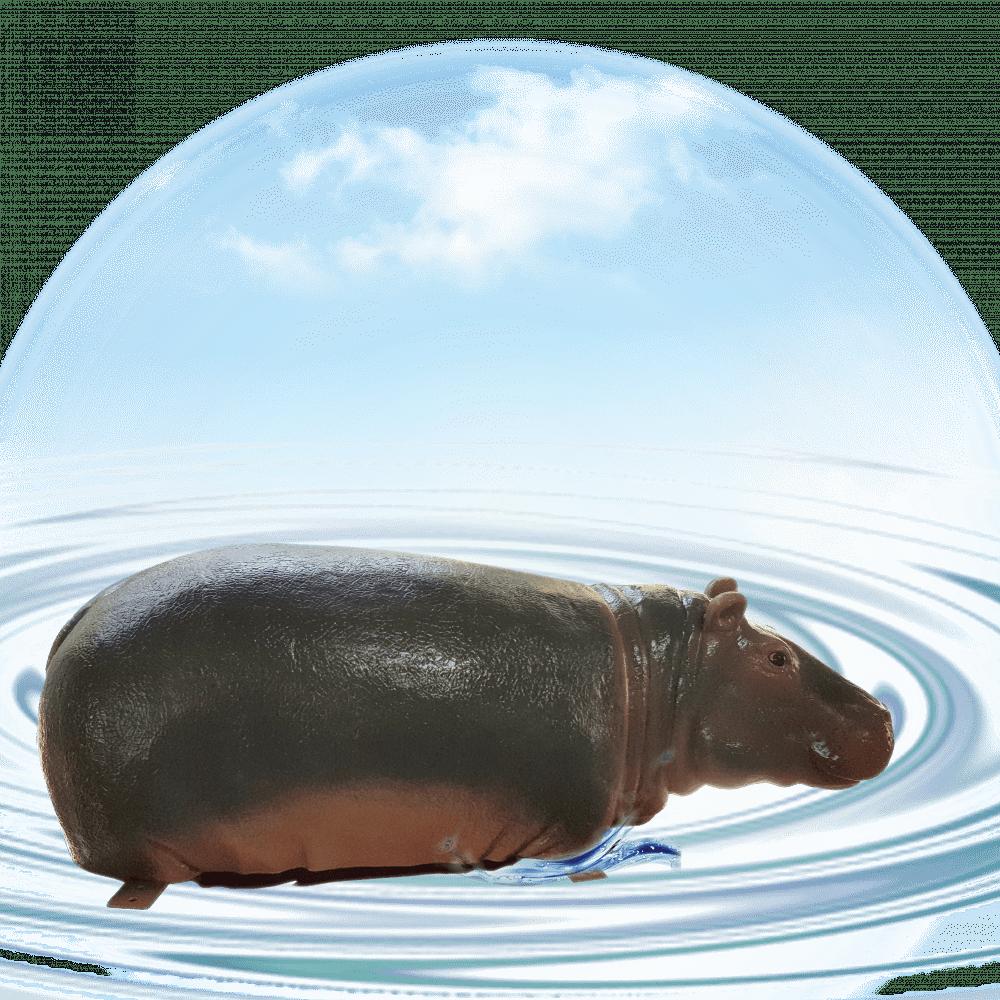 Hippo Calf- 1.2m long-in water