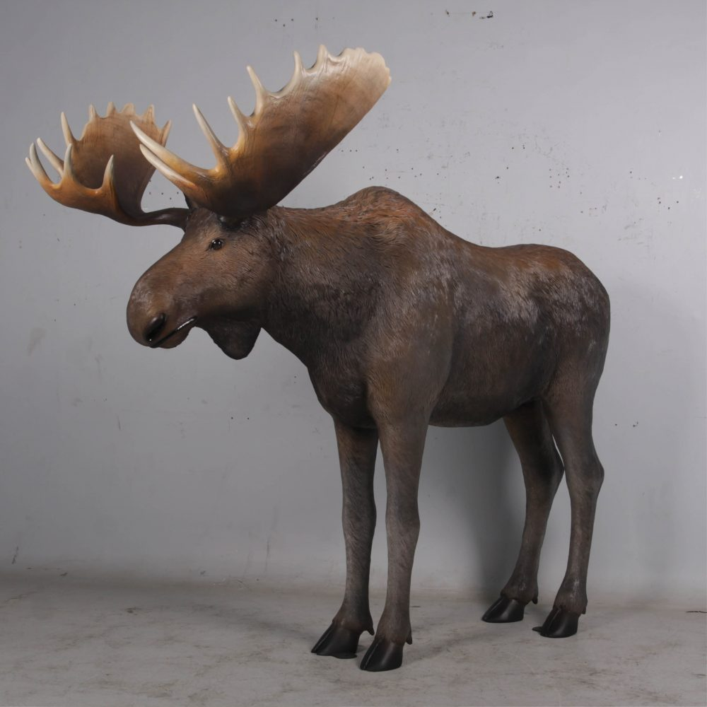 Moose standing - Life-size_brown with antlers- forest animal -side angle view