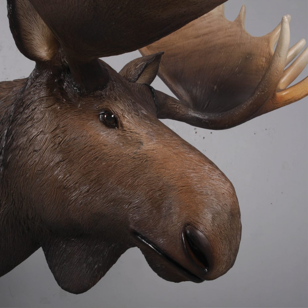 Moose standing - Life-size_brown with antlers- forest animal -side head View