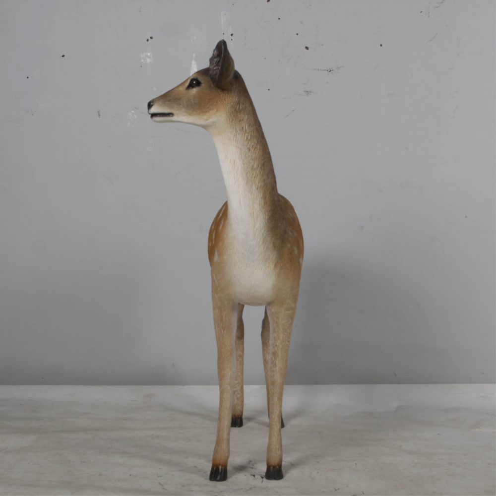 Deer doe – Life-size fallow deer in a standing pose natural with white chest 190015- front view