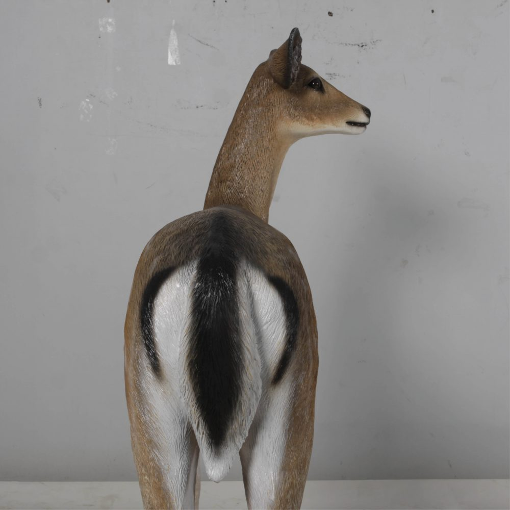 Deer doe – Life-size fallow deer in a standing pose natural with white chest 190015 - rear view