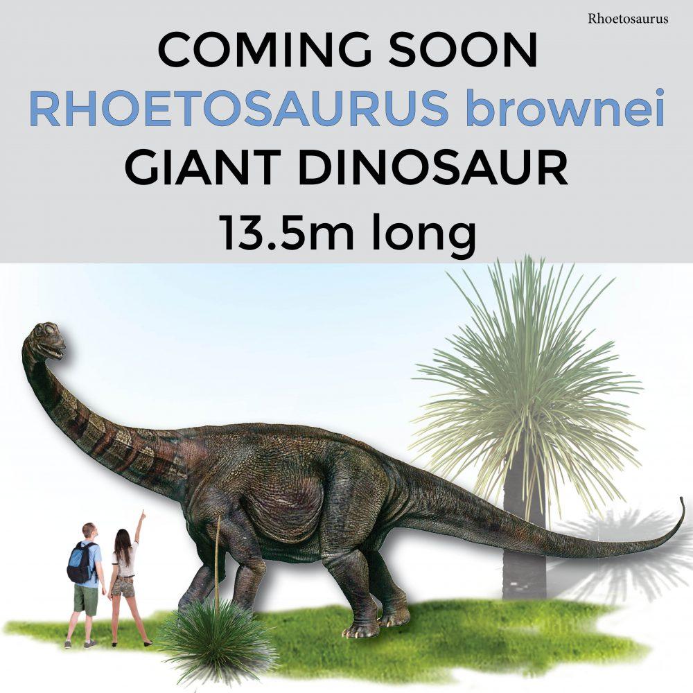 Giant dinosaur long–Rhoetosaurus brownie